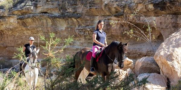 Trekking a cavallo in Andalusia