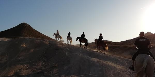 Horse Trekking in Andalusia: 28/01/2020 - 01/02/2020