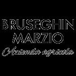 Bruseghin